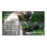 Mono de araña perplejo tarjetas de visita