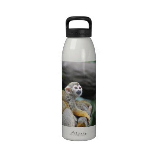 Mono de ardilla adorable del bebé botella de agua reutilizable