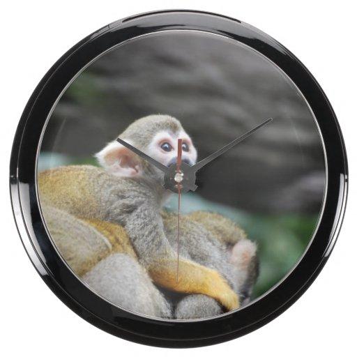 Mono de ardilla adorable del bebé reloj aquavista