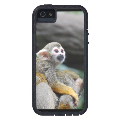 Mono de ardilla adorable del bebé iPhone 5 Case-Mate cobertura