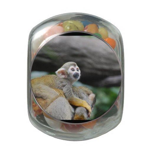 Mono de ardilla adorable del bebé frascos cristal