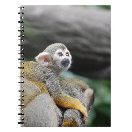 Mono de ardilla adorable del bebé libretas espirales