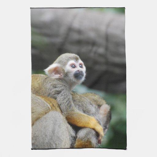 Mono de ardilla adorable del bebé toallas de cocina