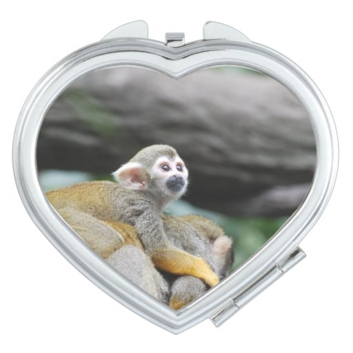 Mono de ardilla adorable del bebé espejo de maquillaje