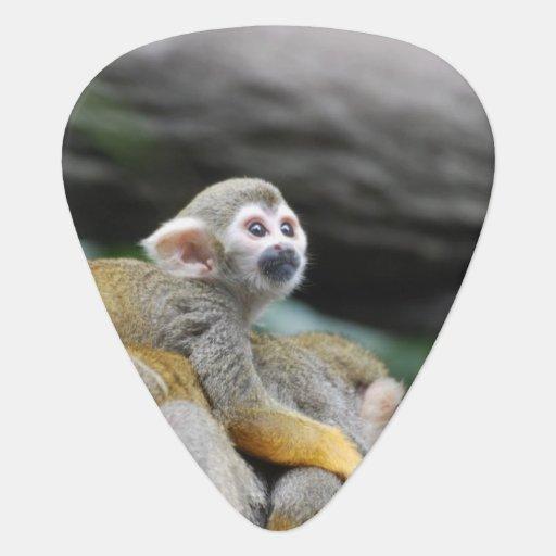 Mono de ardilla adorable del bebé púa de guitarra
