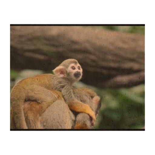 Mono de ardilla adorable del bebé papel de corcho