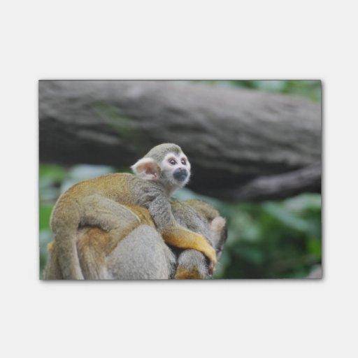 Mono de ardilla adorable del bebé post-it nota