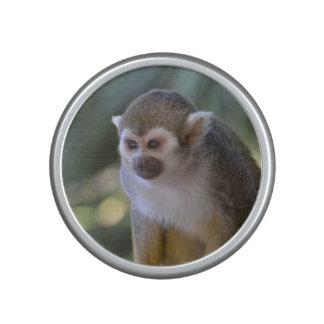 Mono de ardilla asombroso altavoz con bluetooth