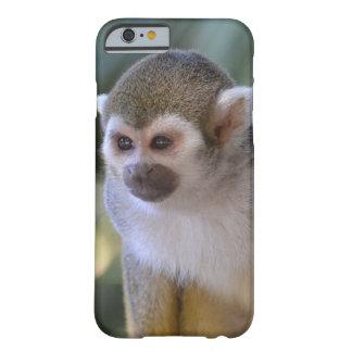 Mono de ardilla asombroso funda barely there iPhone 6