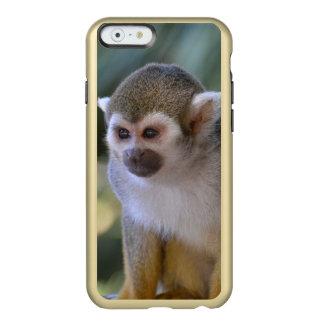 Mono de ardilla asombroso funda para iPhone 6 plus incipio feather shine