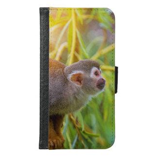 Mono de ardilla carteras