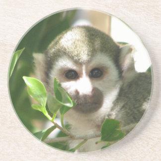 Mono de ardilla común posavasos manualidades