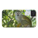Mono de ardilla común (sciureus) del Saimiri Río Case-Mate iPhone 4 Carcasa