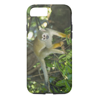 Mono de ardilla común, (sciureus del Saimiri), Río Funda iPhone 7