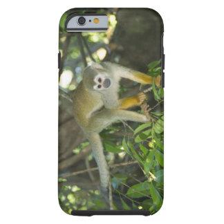 Mono de ardilla común, (sciureus del Saimiri), Río Funda Resistente iPhone 6