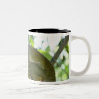 Mono de ardilla común (sciureus) del Saimiri Río Tazas De Café