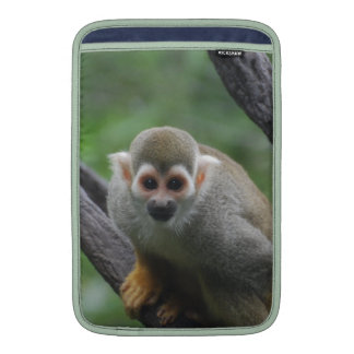 Mono de ardilla dulce funda  MacBook