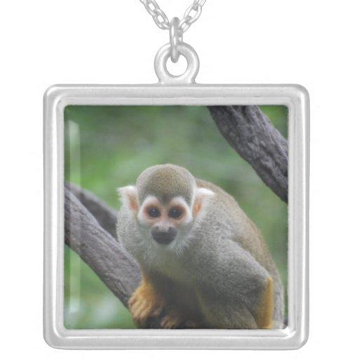 Mono de ardilla dulce grimpolas personalizadas