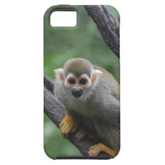 Mono de ardilla dulce iPhone 5 Case-Mate fundas