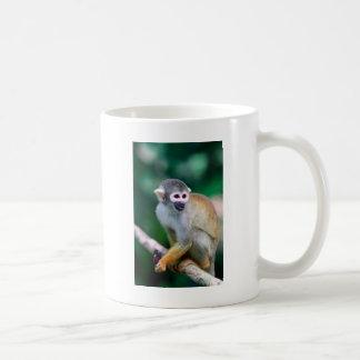 Mono de ardilla el Amazonas Perú Taza