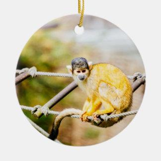 Mono de ardilla - fotografía animal adorno navideño redondo de cerámica