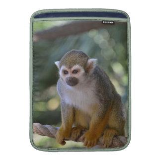 Mono de ardilla inquisitivo funda  MacBook
