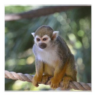 Mono de ardilla inquisitivo invitación 13,3 cm x 13,3cm