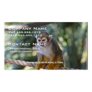 Mono de ardilla inquisitivo tarjetas de visita