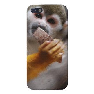 Mono de ardilla lindo iPhone 5 cárcasa