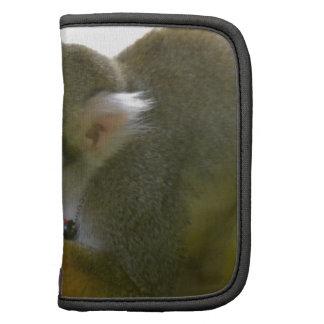 Mono de ardilla Snacking Planificador