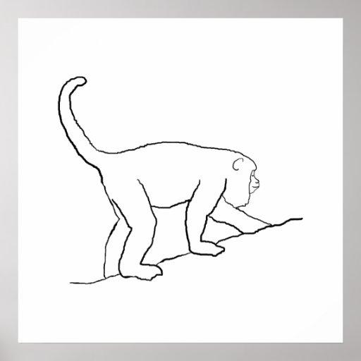 Mono de chillón, caminando impresiones