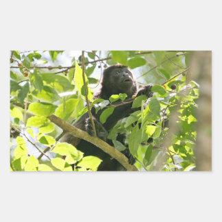 Mono de chillón en la foto de la selva pegatina rectangular