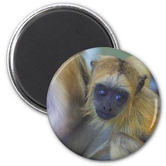 Mono de chillón negro del bebé imán redondo 5 cm
