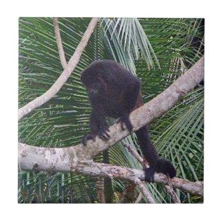 Mono de chillón y mono del bebé en la selva de Cos Azulejos Cerámicos