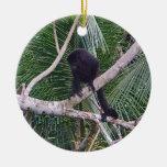 Mono de chillón y mono del bebé en la selva de Cos Adornos De Navidad