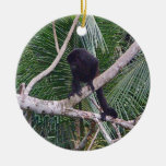 Mono de chillón y mono del bebé en la selva de adorno redondo de cerámica