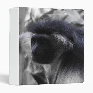 """Mono de Colobus blanco y negro angolano Carpeta 1"""""""