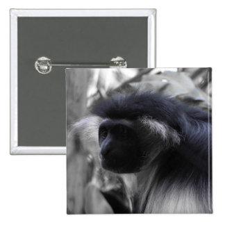Mono de Colobus blanco y negro angolano Pin
