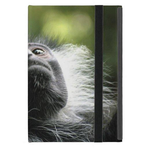 Mono de Colobus iPad Mini Carcasa