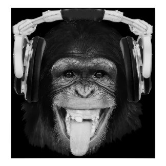 Mono de DJ Póster