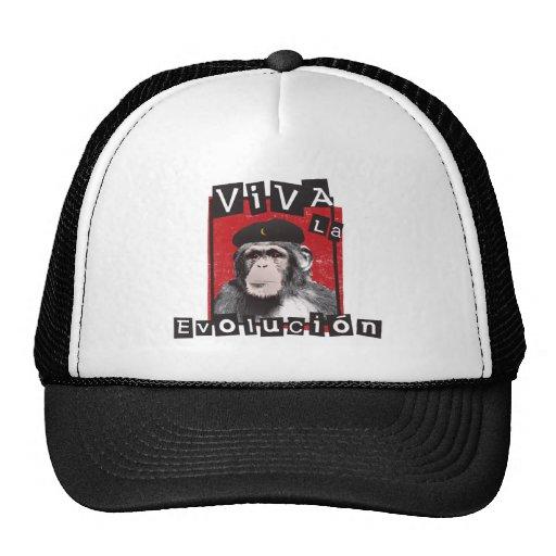 Mono de Evolucion del la de Viva Gorro De Camionero
