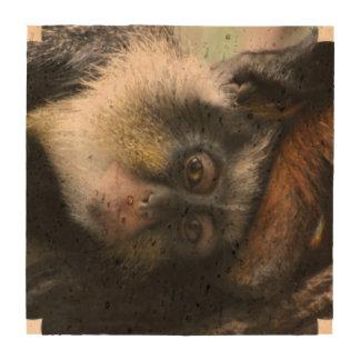 Mono de Guenon del lobo Posavasos