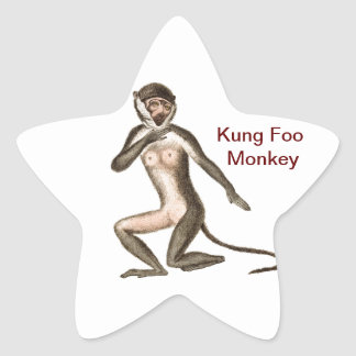 Mono de Kung Foo Colcomania Cuadrada