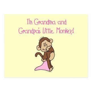 Mono de la abuela y del abuelo - rosa tarjeta postal