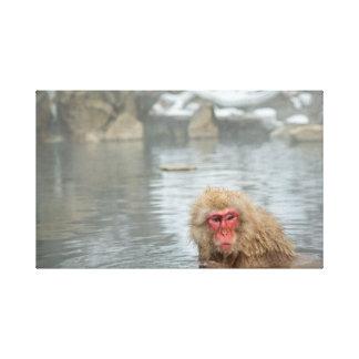 Mono de la nieve en el Onsen Impresion En Lona