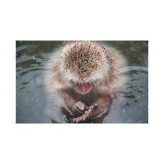 Mono de la nieve en las aguas termales de Japón Impresión En Lienzo Estirada