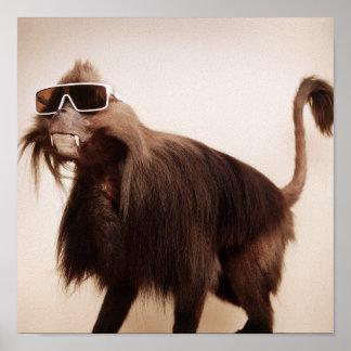 mono de la sol poster