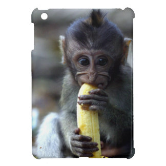 Mono de macaque lindo del bebé que come el plátano