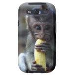 Mono de macaque lindo del bebé que come el plátano galaxy SIII protector