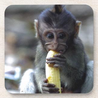 Mono de macaque lindo del bebé que come el plátano posavasos